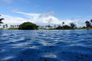 プール 水面撮影